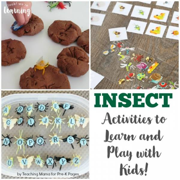 insect ideas for kids
