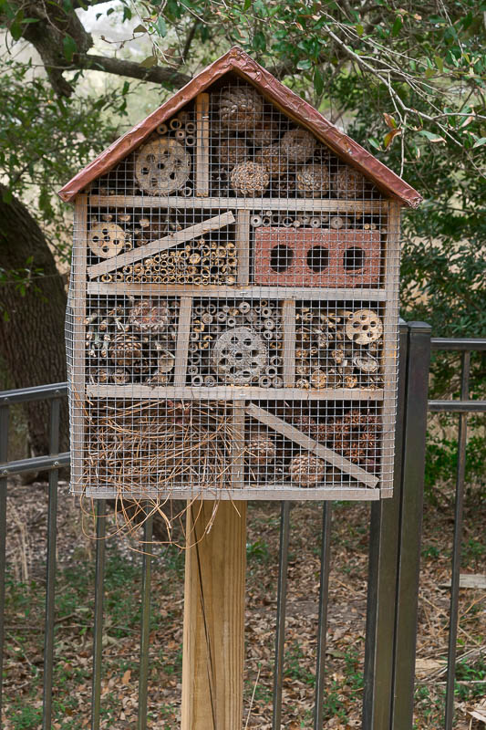 how to make an insect house