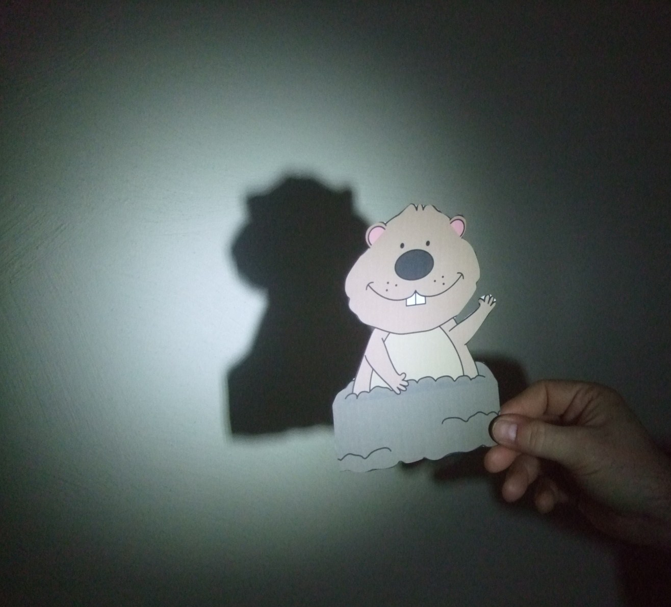 hight resolution of Groundhog Day Activities (shadow experiments