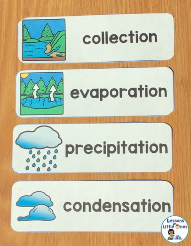 water cycle word wall cards
