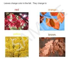 signs of the fall, autumn season