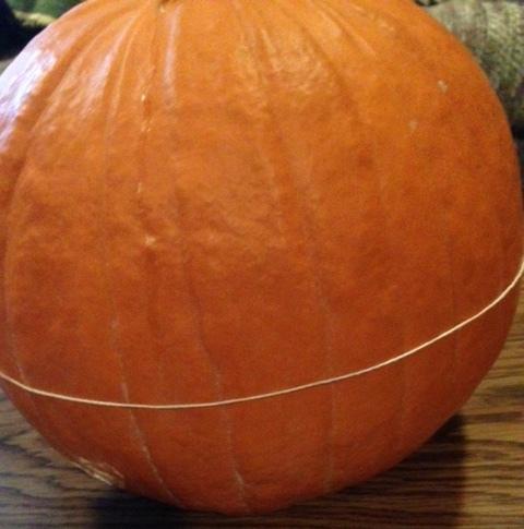 pumpkin girth