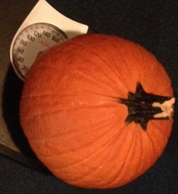 guess the pumpkin's weight