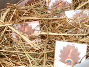 Thanksgiving turkey beginning sounds sensory bin