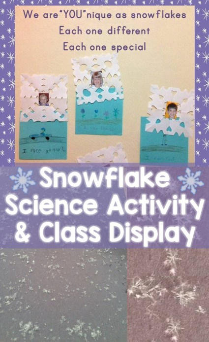 Snowflake Science Activity & Class Display