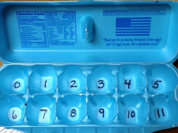 egg carton math game
