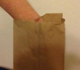 fall leaf feely bag