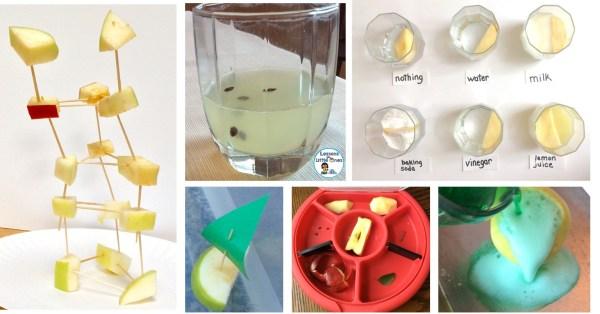 apple science experiments & STEM