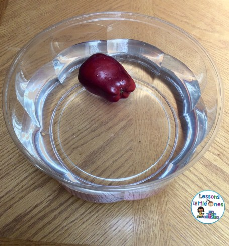 apple sink or float experiment