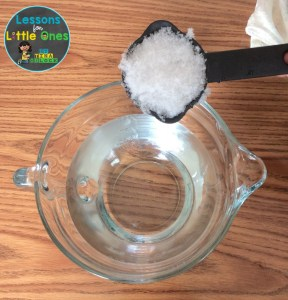 snow sink or float science experiment