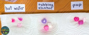 dissolving candy hearts valentine science experiment