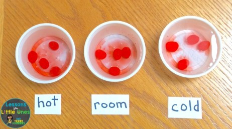 dissolving jelly beans Easter science experiment