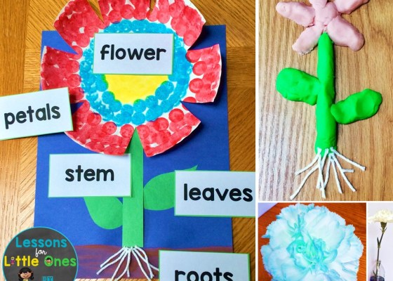 flowers activities, parts of a flower