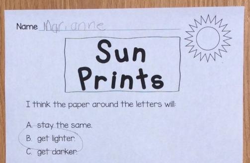sun prints science experiment page
