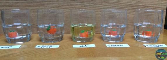 candy pumpkin experiment