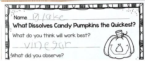 candy pumpkin experiment prediction