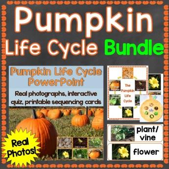 pumpkin life cycle bundle