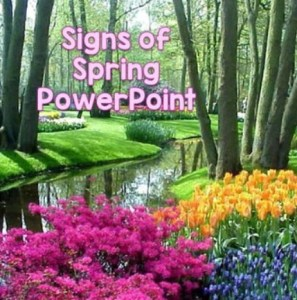 signs of spring PowerPoint presentation