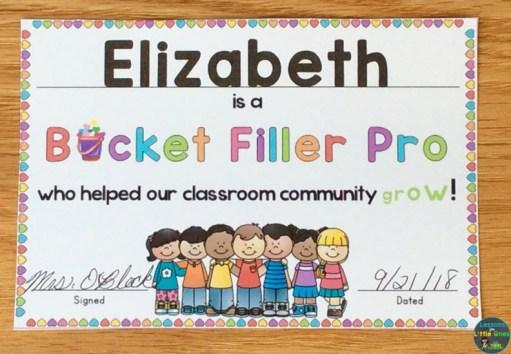 bucket filler pro award