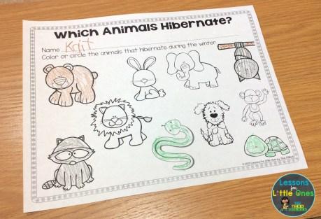 hibernation activity page