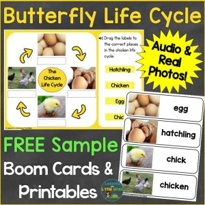 Free Butterfly Life Cycle Boom Cards Printables
