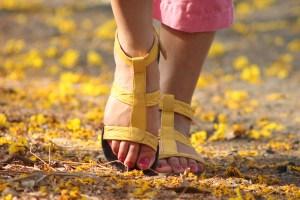 feet-538245_1280