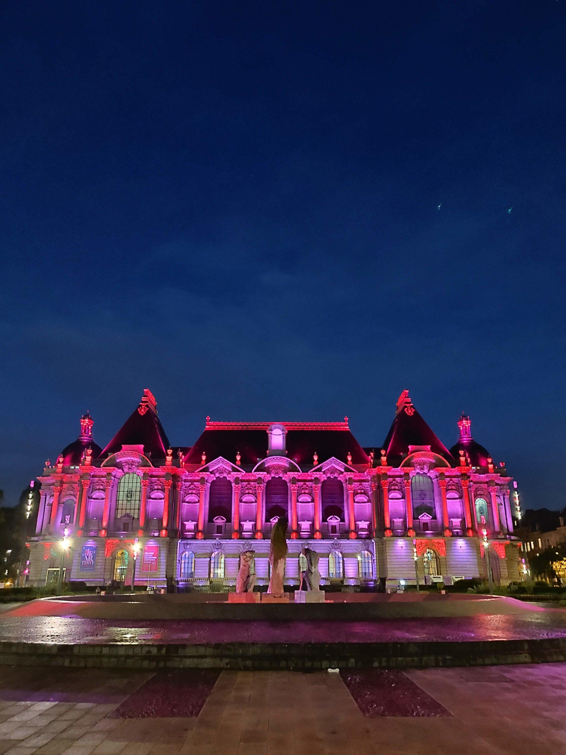 Palais Des Beaux-arts Lille : palais, beaux-arts, lille, Nocturne, Gratuite, Palais, Beaux, Lille, Sorties, D'une, Lilloise