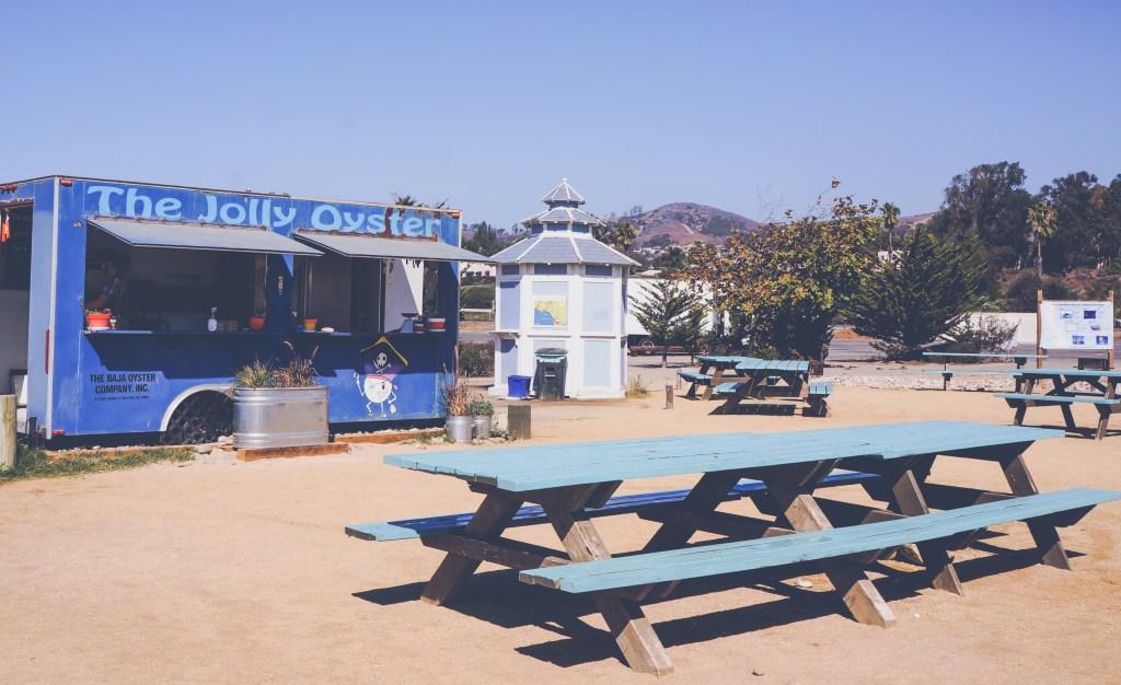 Jolly Oyster Ventura