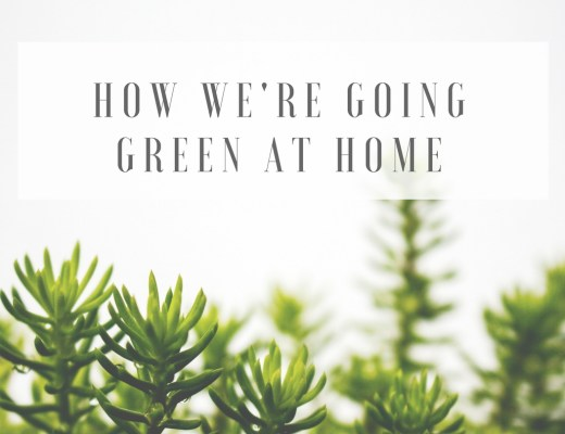 eco-friendly-life-at-home