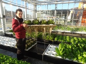 Christophe from Urban Farmers