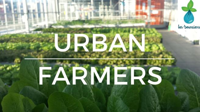 Meeting Urban Farmers