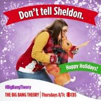 big bang theory amy sheldon noel