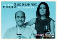 cougar town vin ellie andy