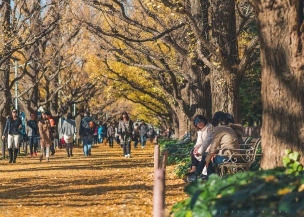 Autumn chat