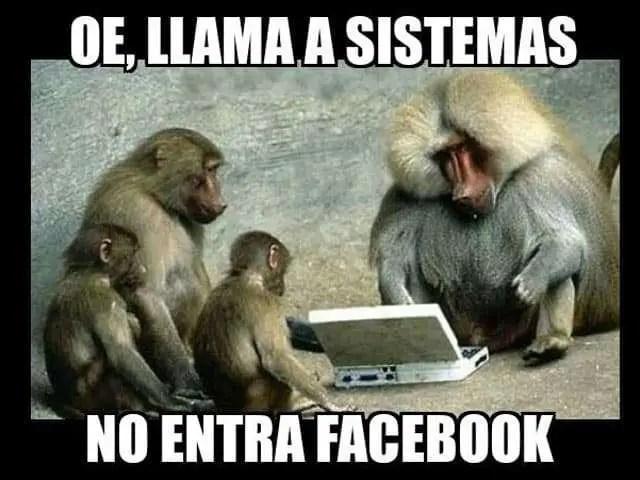 Facebook & Instagram se caen