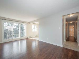 elmwood apartments living room window