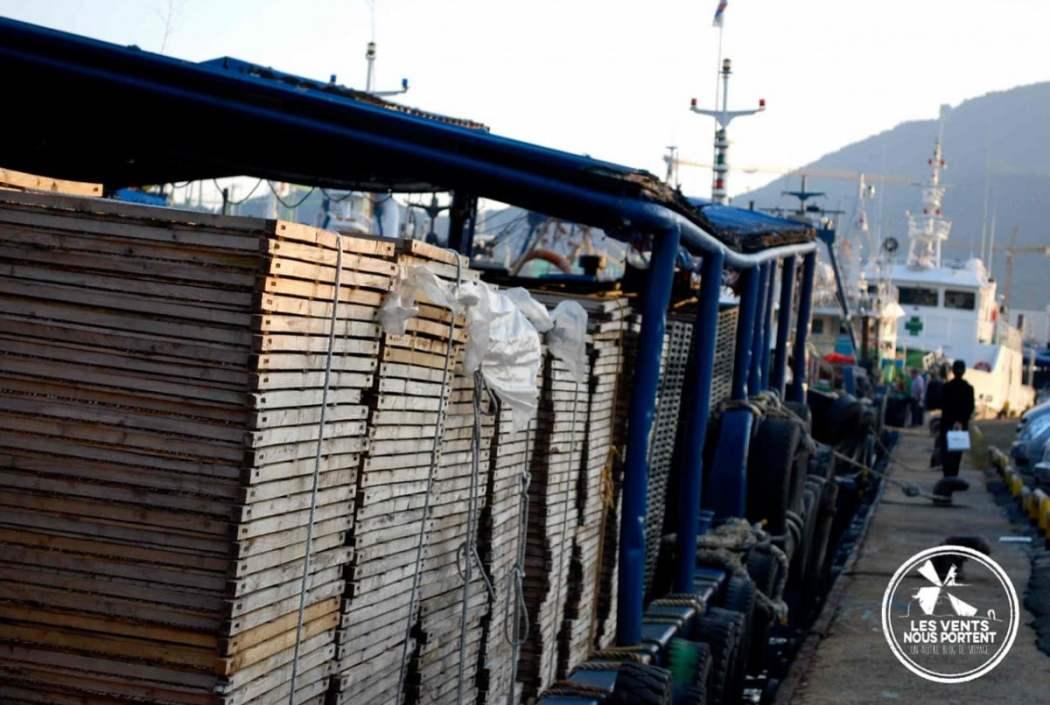 Port de Tongyeong Photos de Coree du sud