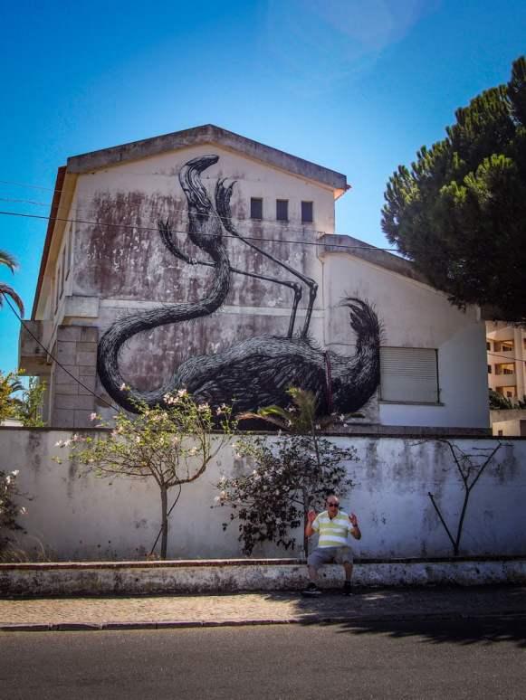 flamant rose sur les murs de lagos street art algarve voyage portugal