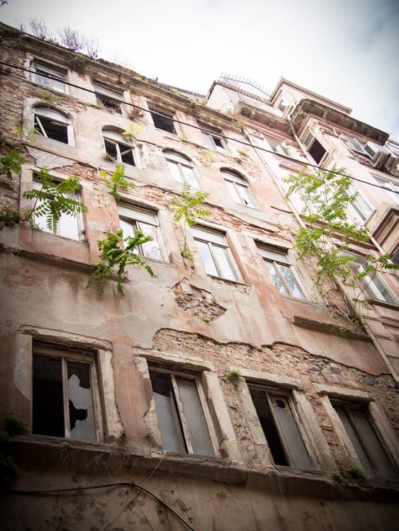 plantes poussent sur mur d'immeuble cihangir istanbul beyoglu