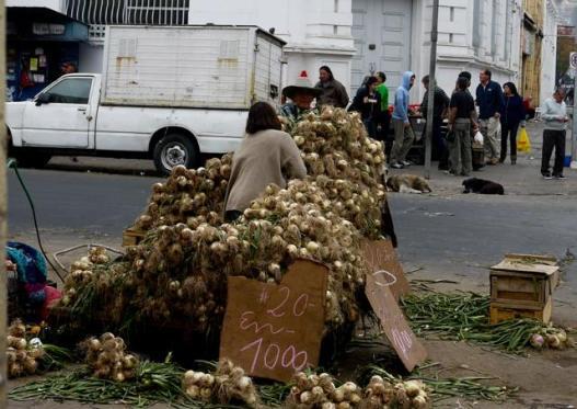 vendeur d'oignon au marché de valparaiso au chili