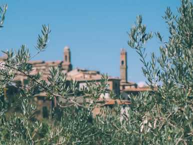 vue de montalcino dans le val d'orcia en toscane
