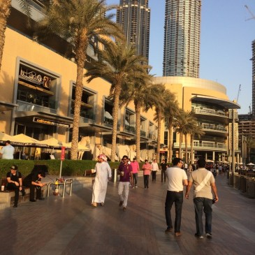 Rien à voir à Dubaï