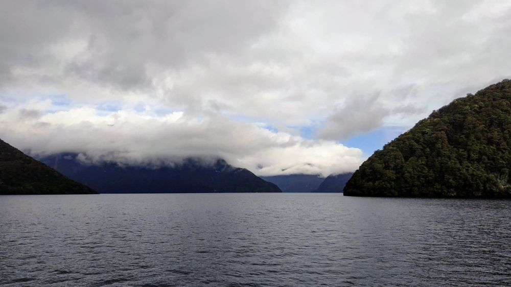 excursion Doubtful Sound