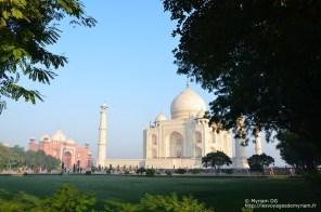 Le Taj est entourée de jardin très sympa, avec des fleurs multicolores. C'est reposant à l'ombre ^^