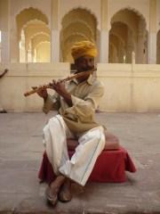 Jodhpur (83)