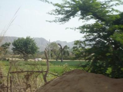 Dans le bus me menant à Pushkar