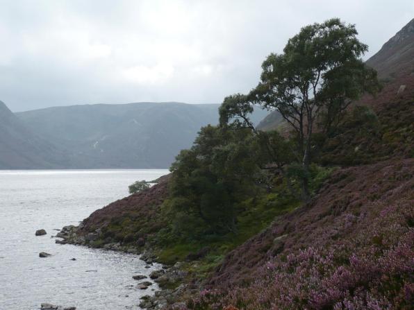 Loch Muick, le 30 aout 2008 (71)