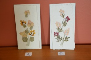 Cartes fleurs séchées