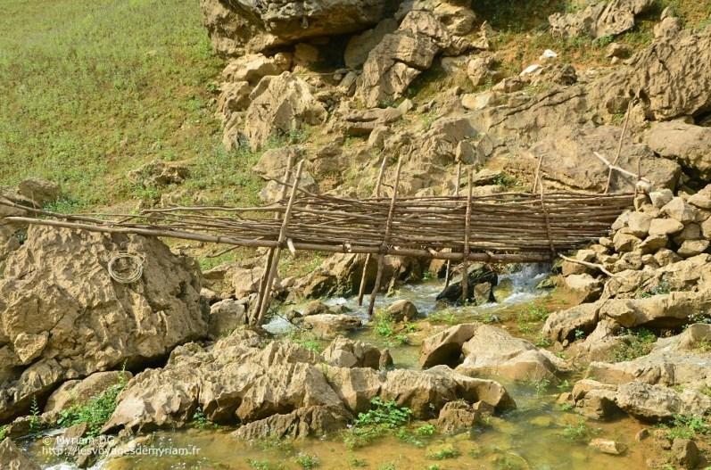 """L'eau passe dans ces petites installations et retient tout ce qui pourrait boucher ou tomber dans le """"siphon"""".Je pense surtout aux poissons, puisqu'il y a aussi des filets juste avant la cascade"""