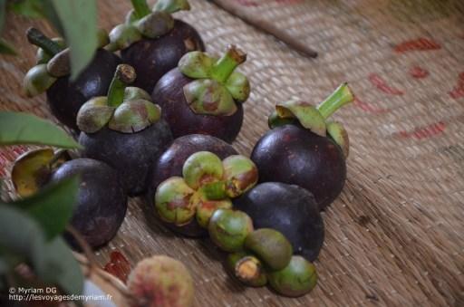 des mangoustans: il ne faut surtout pas manger la peau violette et dure qui est toxique